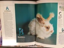 Photo of print article in O Magazine