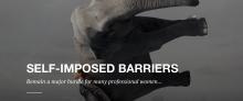 Seat-Imposed Barriers banner